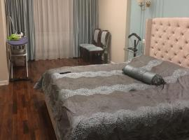 Comfortable and beautiful apartment in the heart of the capital, Astana