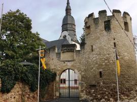 Fronhof 3