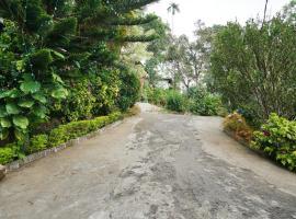 OYO 27832 Home Eastate Tree House, Munnar