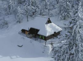 Chalet Pehta Velika Planina, Stahovica