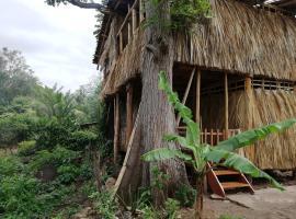 El Bamboo Tree House, Balgue