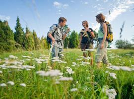 Nengshof Ferienhäuser Sonnenblume und Heublume