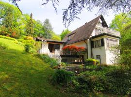 Ferienhaus Villa EMG Frankfurt / Bad Soden