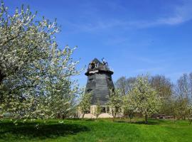 Windmühle Törpin