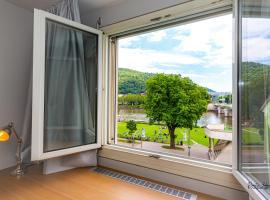 BS Neckar Apartment Heidelberg