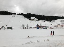 48qm Ferienwohnung mit großer Terrasse im Schwarzwald