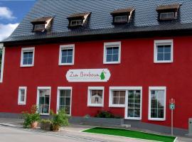 Apartmenthaus zum Birnbaum Apartment 2