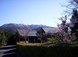 Forest Peak Motel, 汉默温泉