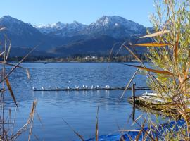 Ferienwohnung Alpenblick in Hopferau - Fuessen
