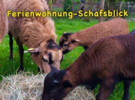 Ferienwohnung-Schafsblick
