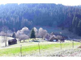 Ferienhaus Schwarzwald Seewald Erzgrube Badesee 100% Natur