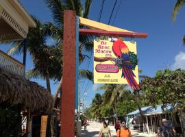 De Real Macaw, Caye Caulker