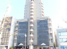 Hotel Alpha Inn Akita, Акита