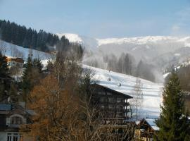 Modern Apartment in Schulstrasse Near Lake and Ski Lifts, Zell am See