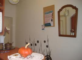 Rusztikus lakás kilátással, Szeged