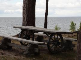 Camping Klintis, Tūja