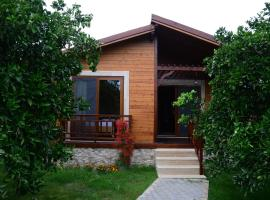 Villa Bilge, Çıralı