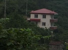 Zazana Mountain House, Yolüstü