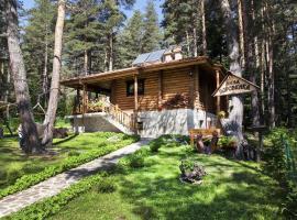 Villa Borovinka, Tsigov Chark
