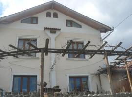 Mitinkovata House, Bachevo