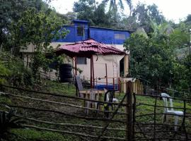 Tropical Retreat, Muñoz
