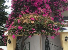 Artemidos Apartment, Agia Marina