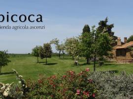 Bicoca - Casaletti, Viterbo