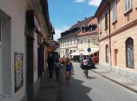 Hostel Sleeping Beauty, Ljubljana