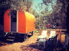 Ozgur Beach Camp, Arıklı