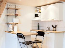 Helsinki City Center Apartment,