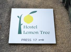 Lemon Tree Hostel, Krakau