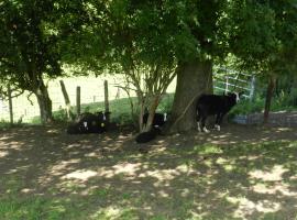 Xhawirs Horse Farm, Soumagne
