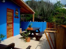 Hopi Cadushi Studio, Santa Cruz