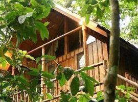 Bayrams Tree Houses, Olympos