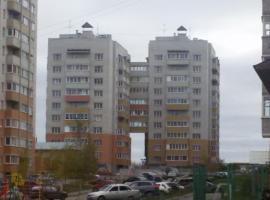 Apartment Petrozavodskaya, Vologda
