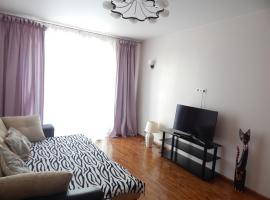 Apartment in Mytishi on Rozhdestvenskaya, Mytishchi