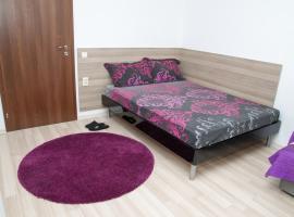 Apartment Medical University, Pleven