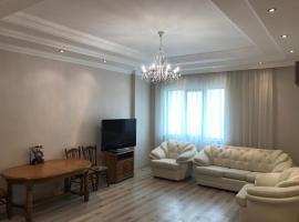 Apartment in Triumfalny, Astana