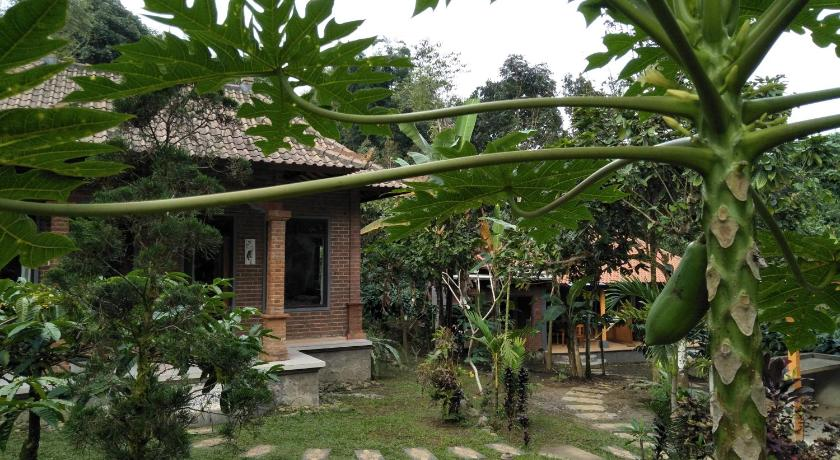 Dina Home Stay