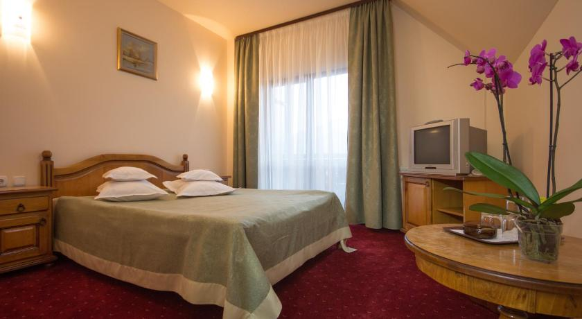 Double or Twin Room - Guestroom Pension Dor de Munte