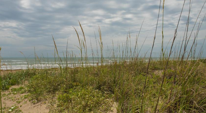 South Padre Island Beach Rentals