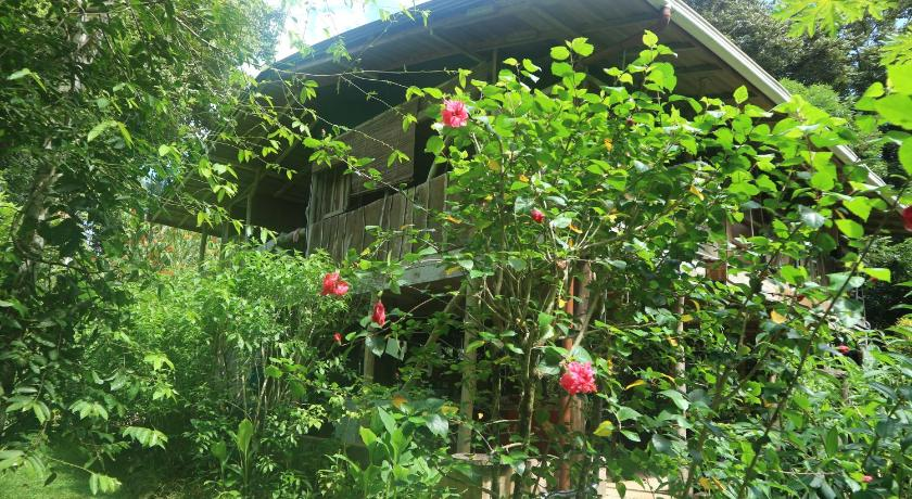 More about El Toboso Bed&Breakfast