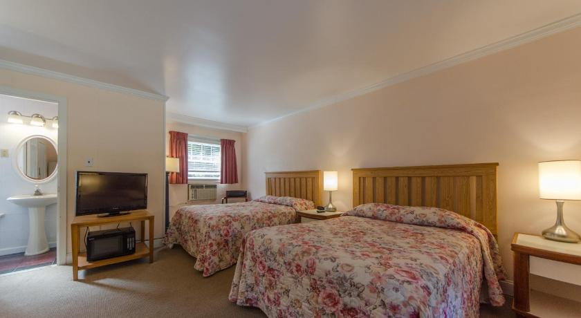 Standard Room with Two Double Beds (4 adults) Hyland Motor Inn