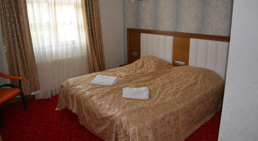 Standard Double or Twin Room Sarikamis Kar Hotel