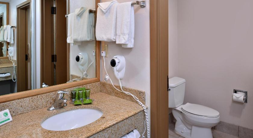 Room Selected at Check-In - Bathroom Stage Coach Inn