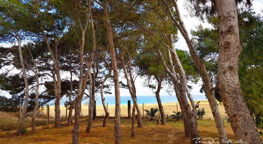 Pineta Sul Mare B&B