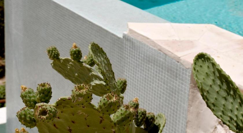 hoteles que admiten mascotas en Murcia  Imagen 28
