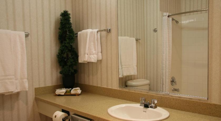 Bathroom Holiday Inn Selma - Swancourt