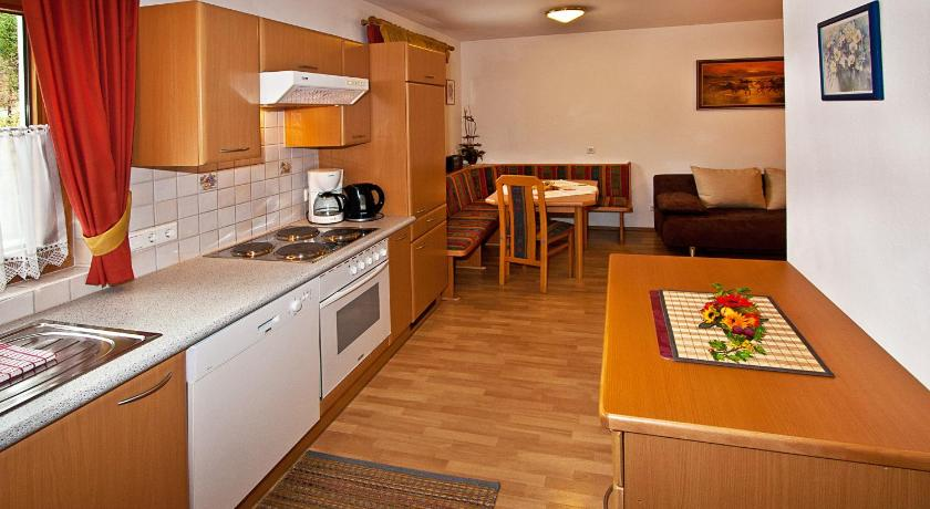 One-Bedroom Apartment (2 Adults) with Balcony Ferienwohnungen Ehammer