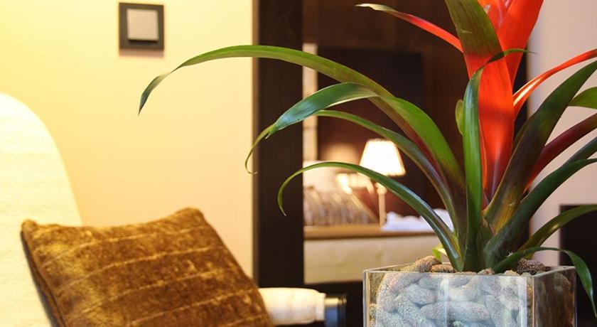 hoteles con encanto en traguntia  26